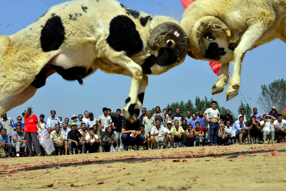 Провинция Шаньдун, Китай