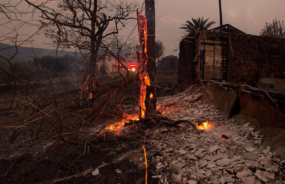 Сгоревший дом и тлеющее дерево