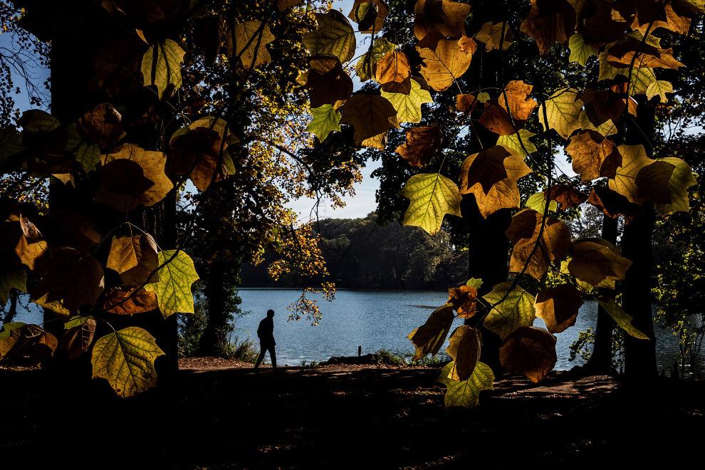 Осенний парк в Лионе, Франция