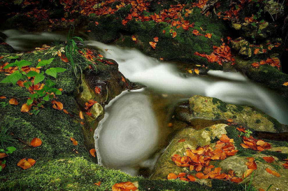 Осенний водоворот