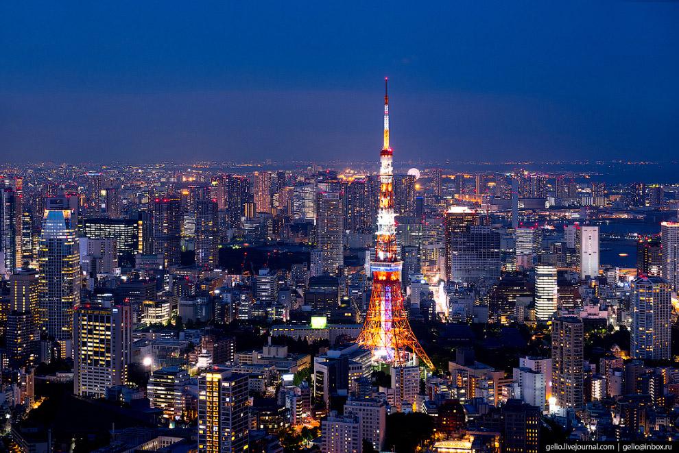 Телевизионная башня Токио (Tokyo Tower)