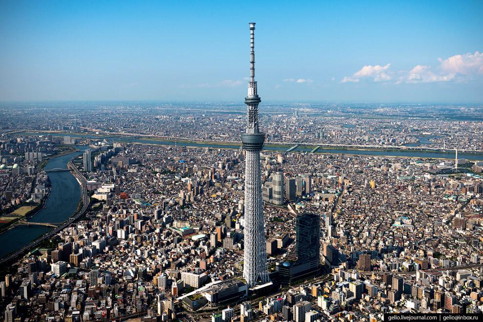 Телевизионная башня Tokyo Skytree («Небесное дерево»)Телевизионная башня Tokyo Skytree («Небесное дерево»)