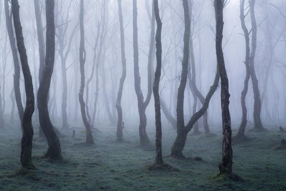 Утро в национальном парке Пик-Дистрикт