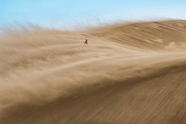 Песчаная буря в Национальном парке Алтын-Эмель, Казахстан