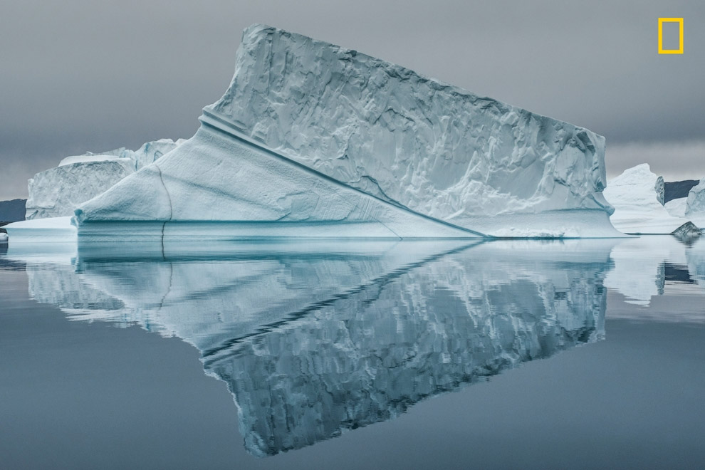 Арктика и айсберги