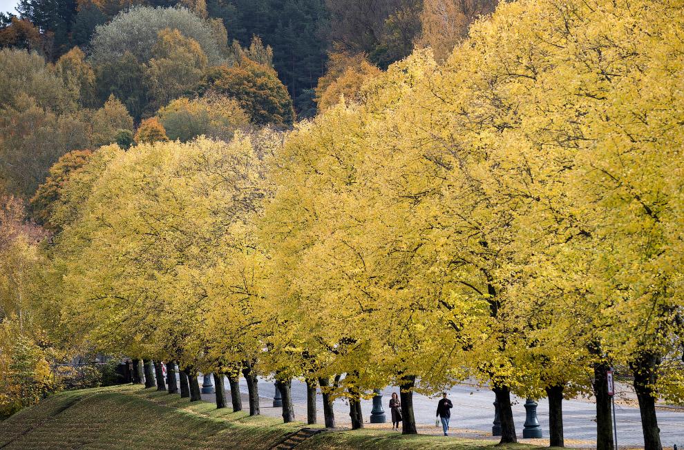 Осенний пейзаж в Вильнюсе, Литва