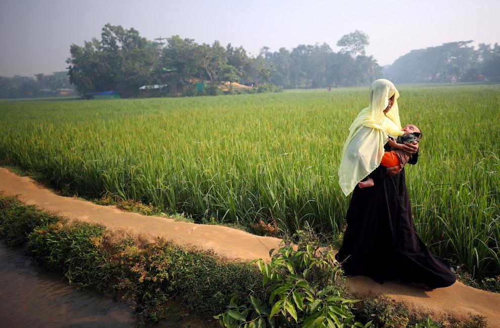 Базара Кокса, Бангладеш