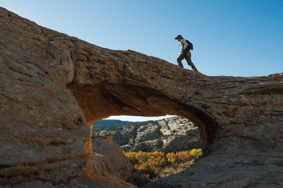 Вот такой мост создала природа в Национальном памятнике Медвежьи уши