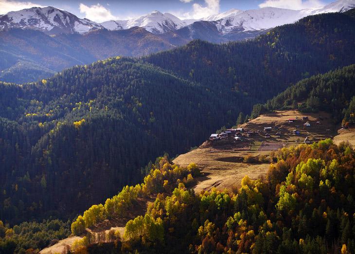 Перегон овец на Кавказе