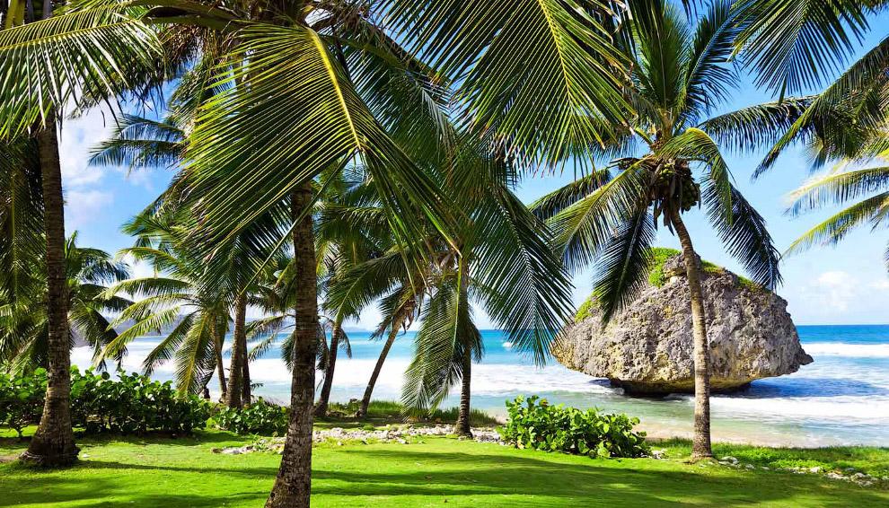 Барбадосу