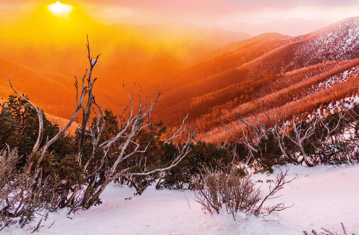 Закат сквозь туман на горе Хотэм, штат Виктория, Австралия