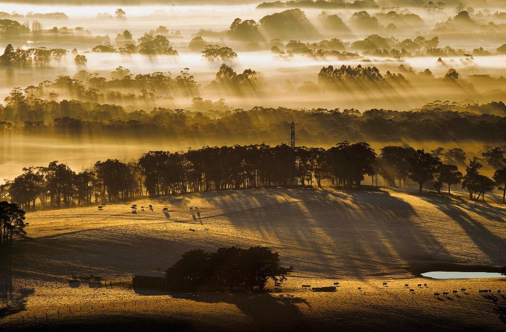 Виктория — штат на юго-востоке Австралии