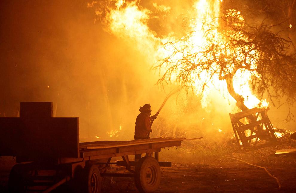 30 января лесные пожары в Чили всё продолжались