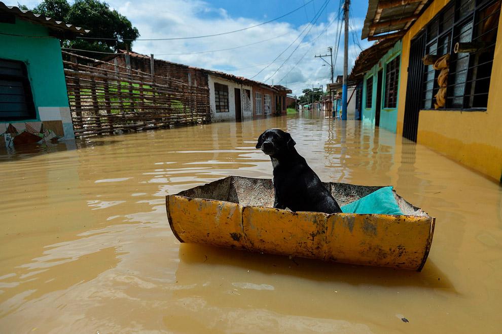 В это же время наводнении было и в Колумбии