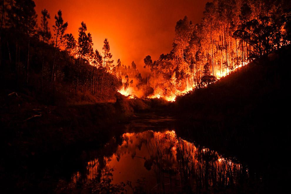 Лесные пожары в центре Португалии
