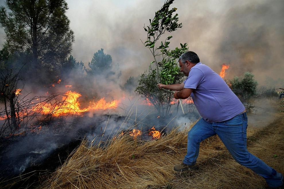Местный житель борется с огнем в португальском городе Каштелу-Бранку