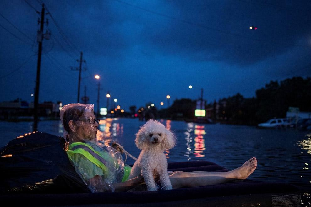 Ураган «Харви»