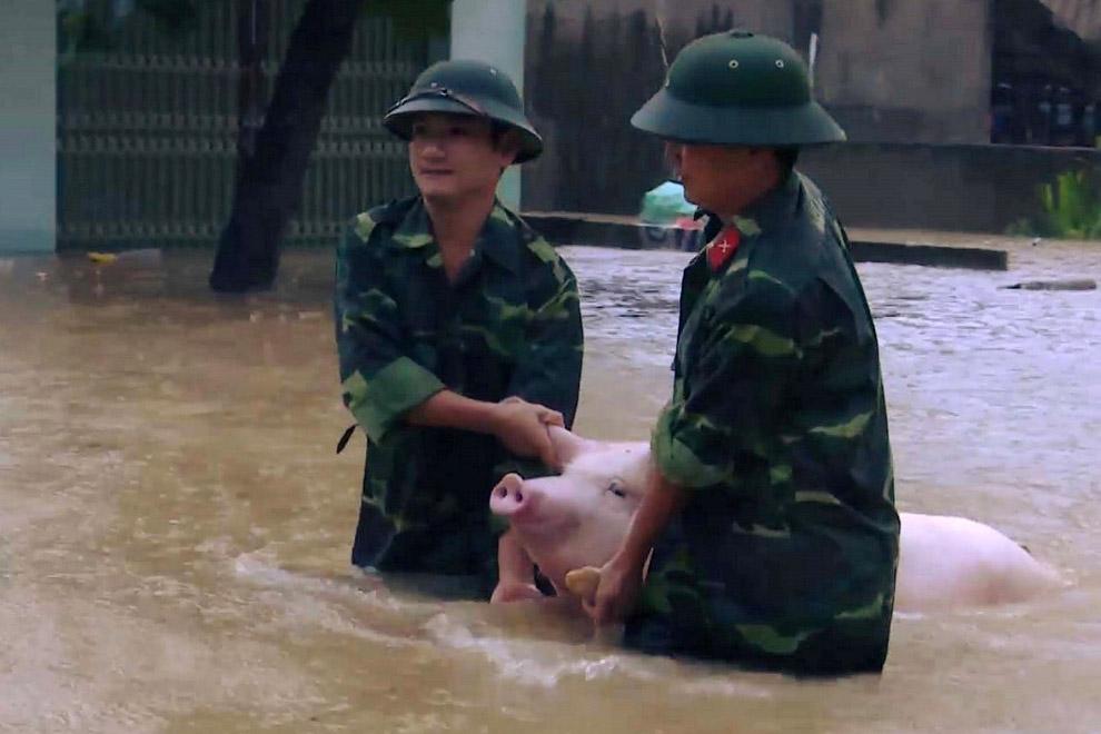 Октябрьское наводнение во Вьетнаме