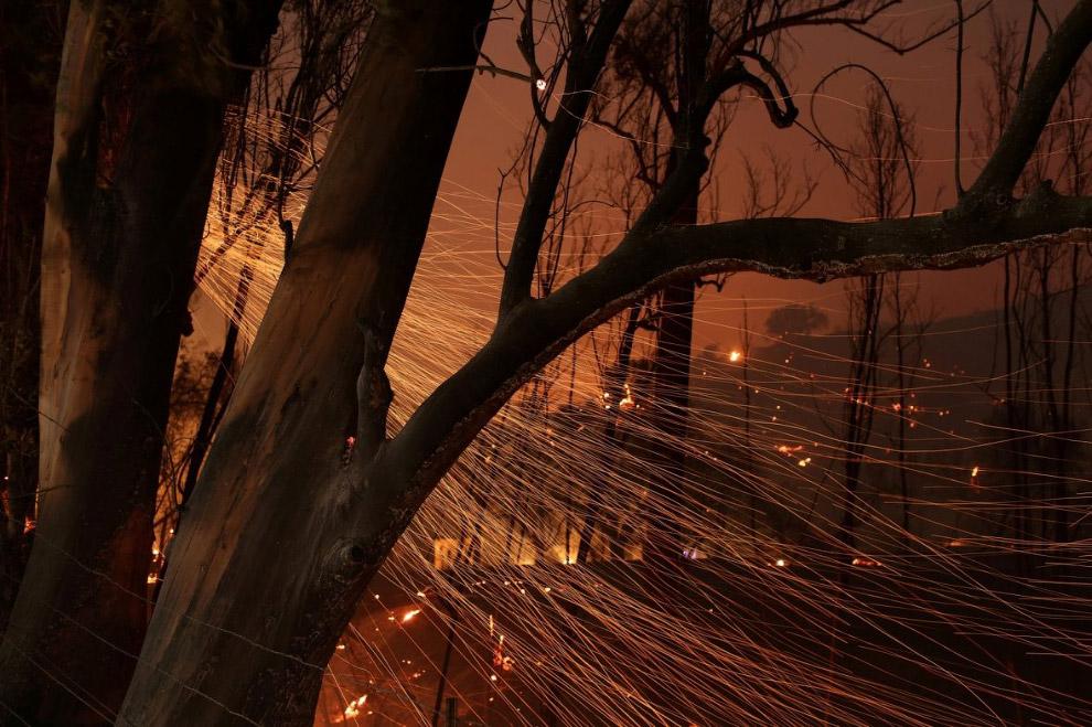 А в Калифорнии всё бушуют пожары