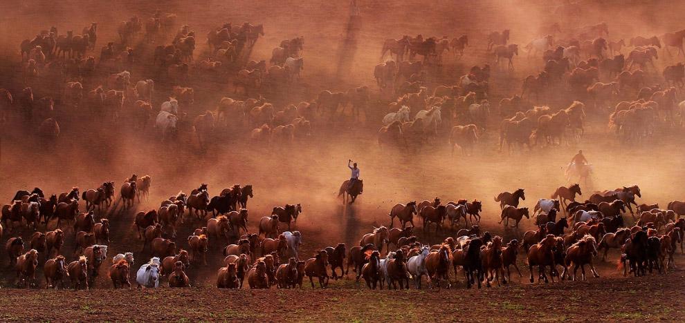 Пастбища во Внутренней Монголии, Китай