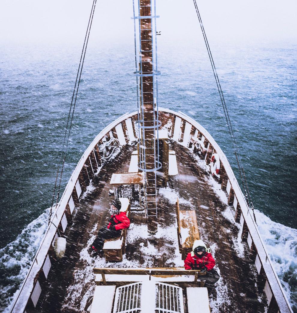 Путешествие по Исландии в поисках китов