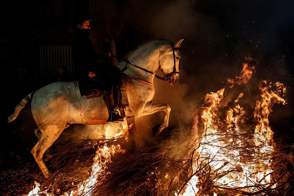 Вогонь і коні: День святого Антоніо 2018