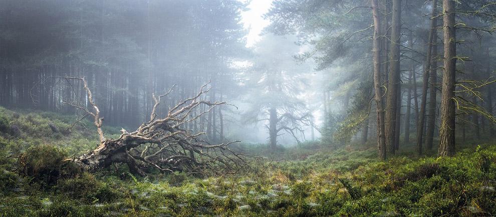 Пейзажи Северного Йоркшира, Англия