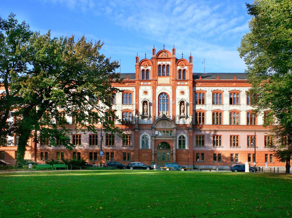 стокский университет