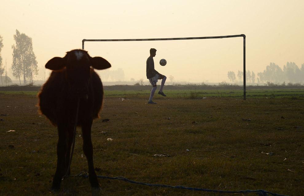 Еще один футболист на окраине Джаландхара, Индия