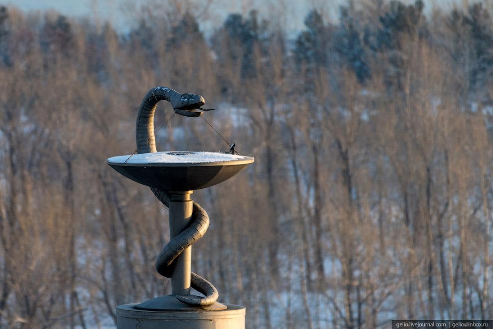 Чаша и змея над куполом здания КрасГМУ.