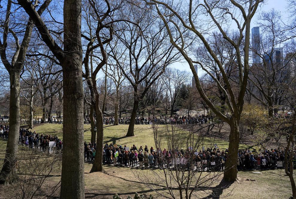 Акция в Центральном парке в Нью-Йорке