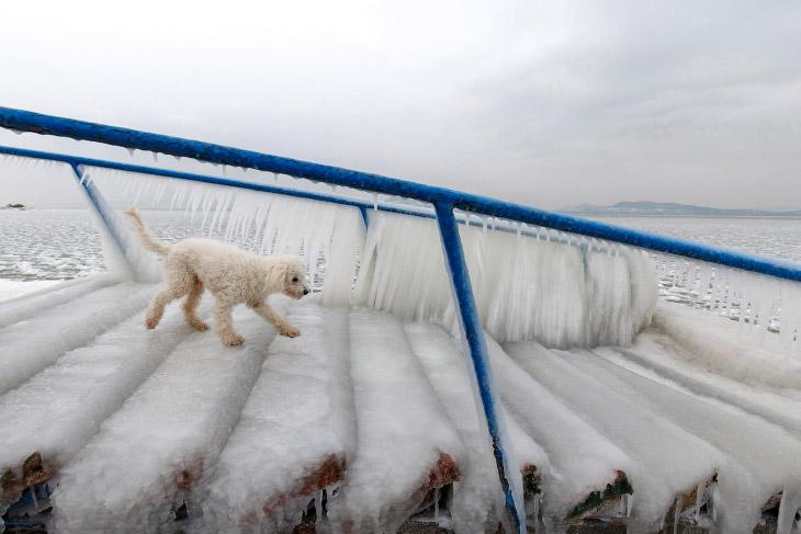 Коллапс в Европе: холода и снегопады