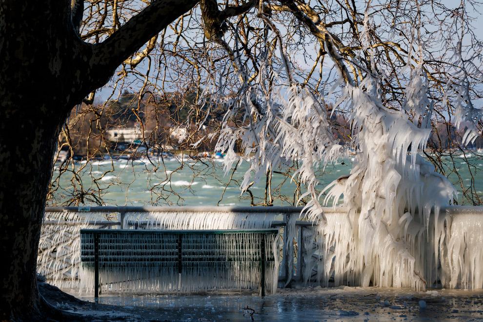 Берег Женевского озера в Швейцарии