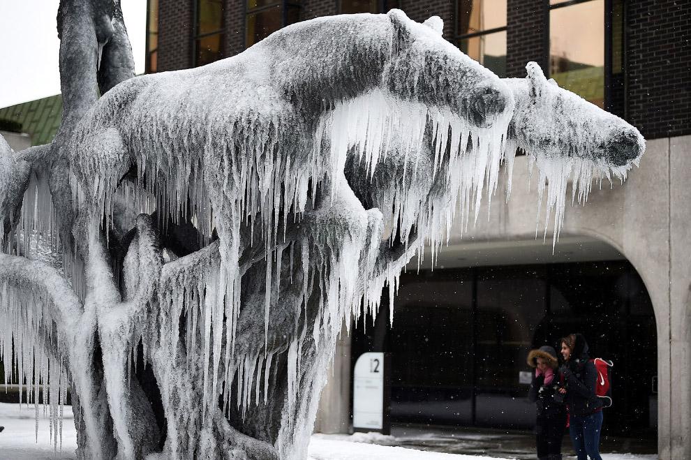 Замерзшая лошадь в центре Дублина, Ирландия