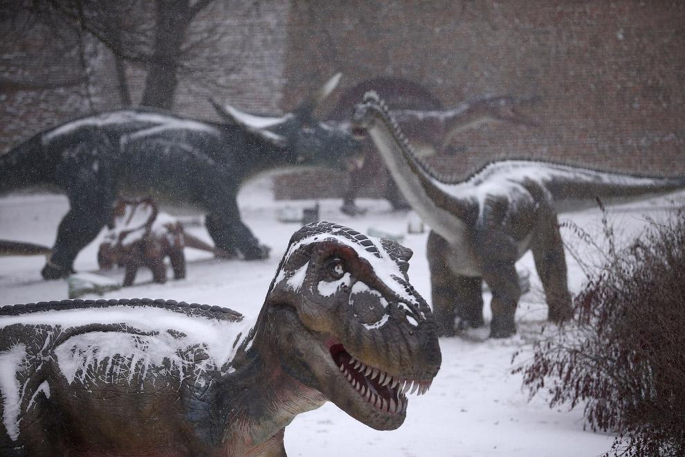 Динозаврам в Белграде, Сербия тоже холодно