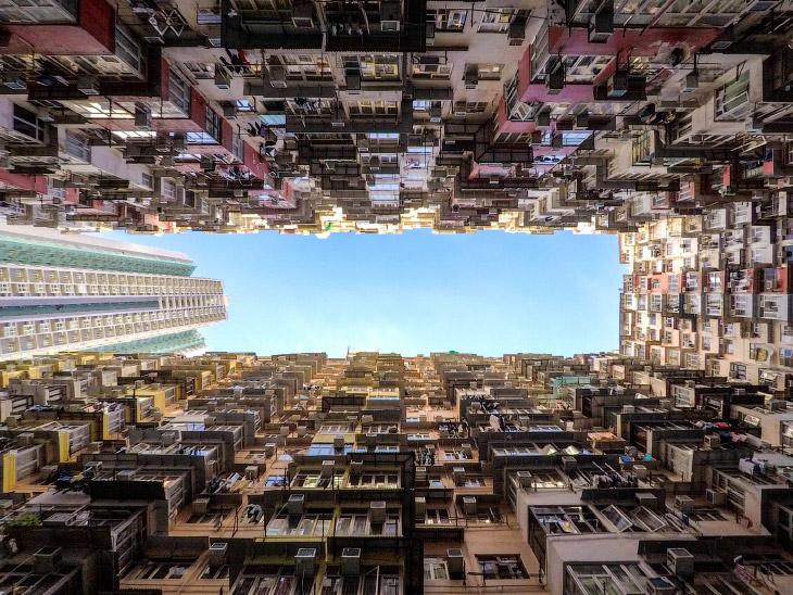 мурашники Гонконгу
