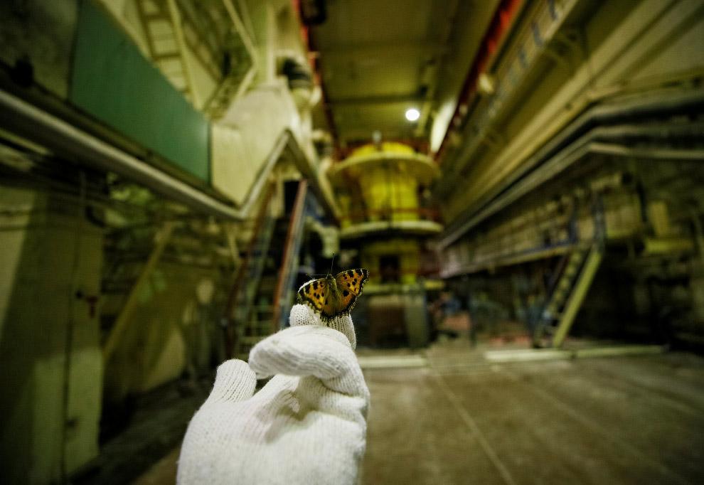 http://loveopium.ru/content/2018/04/chernobyl/16s.jpg