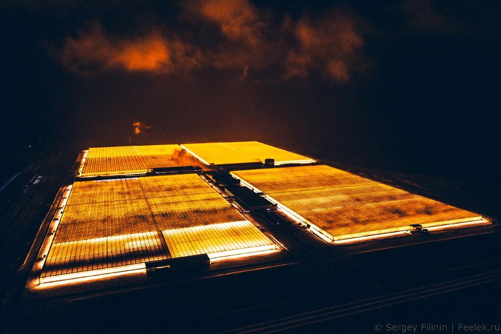 тепличный комплекс «Агро-инвест»