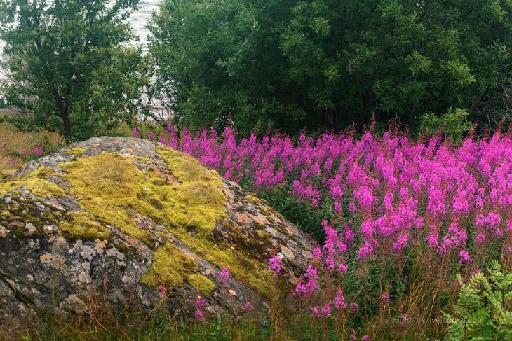 Тромсё: добро пожаловать в Норвегию