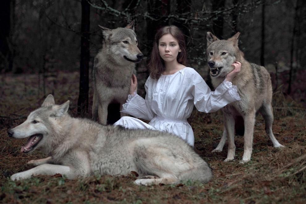Сказочные фотография с волками