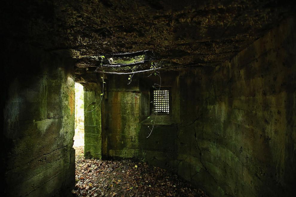 Бывший немецкий бункер времен Первой мировой войны