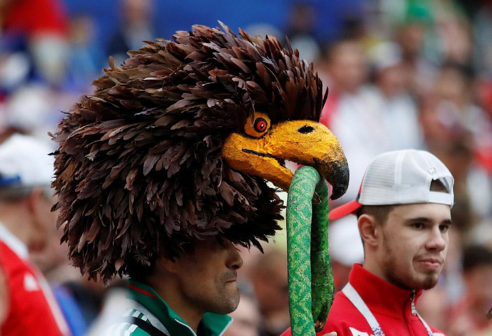 Некоторые футбольные фанаты подошли к делу с креативом