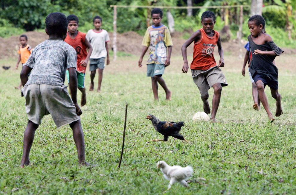 Футбол с курицами недалеко от Саратамата