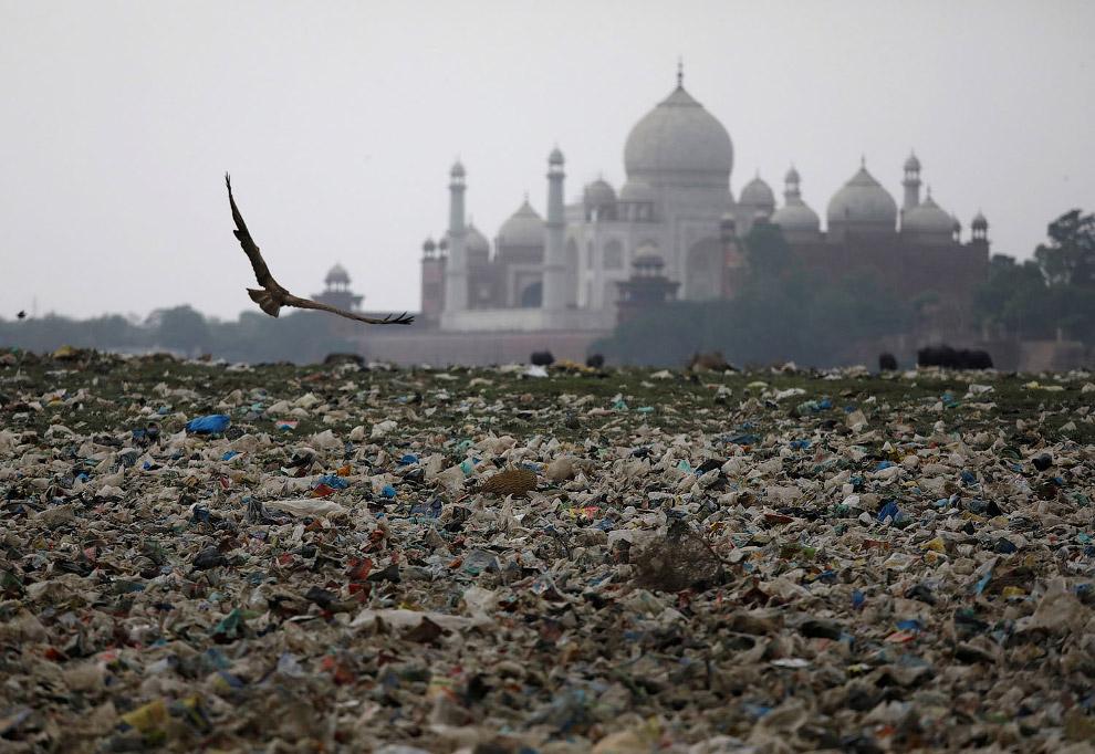 Пластиковый мир у Тадж-Махала в Агре, Индия