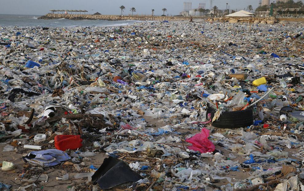 Ливанские пластиковые берега