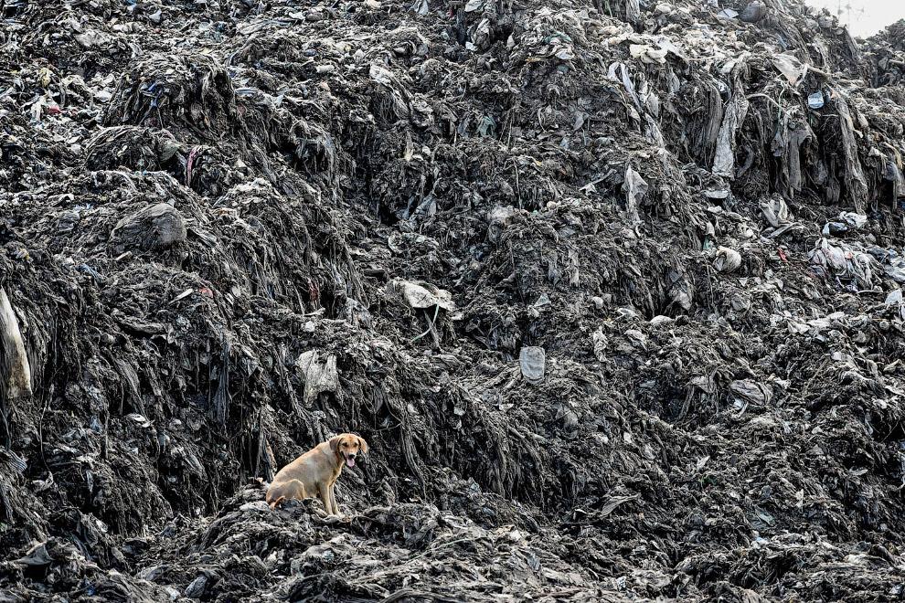 Пластиковый мир в Момбасе, Кения