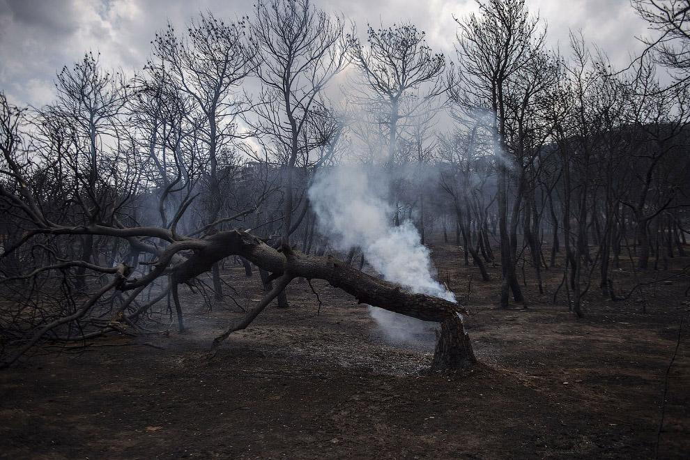 Пожежі 2018. Греція