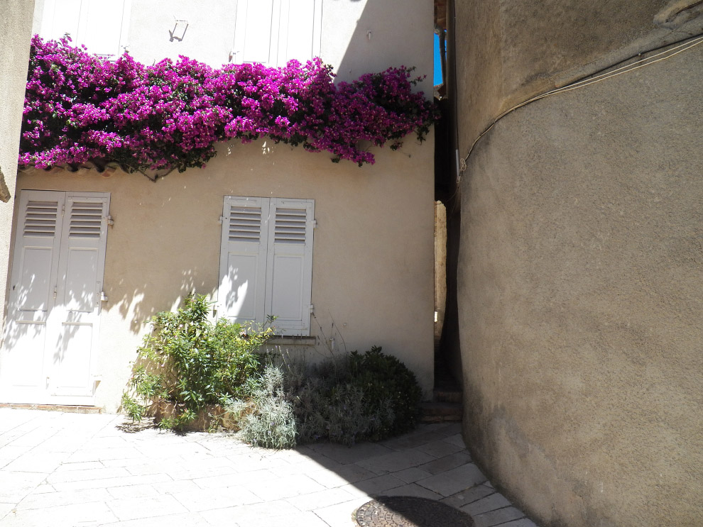 улица Андроуно (L'Androuno)