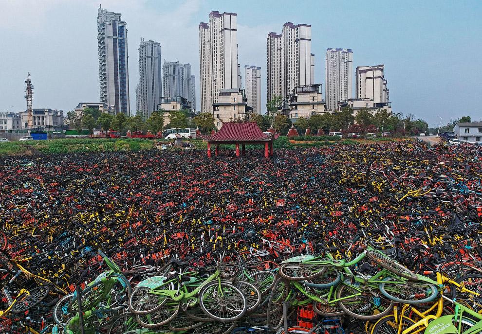 Велосипедные кладбища в Китае