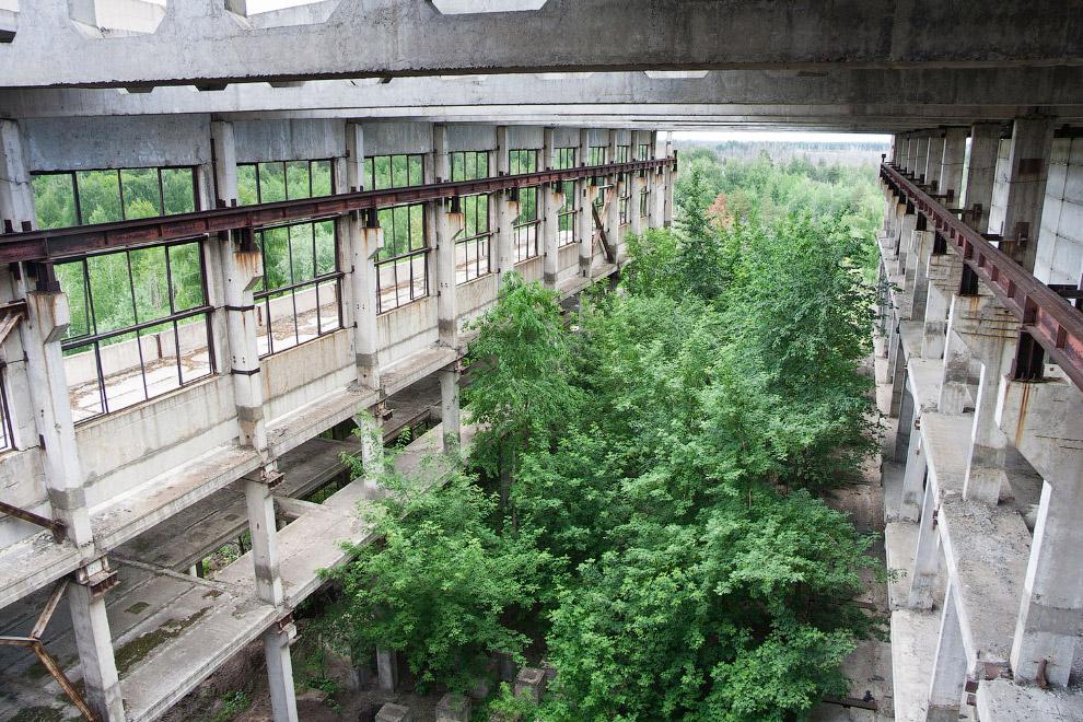 Заброшенное промышленное здание в Воронежской области